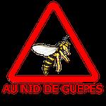 Destruction de nids frelons asiatiques, guêpes, abeilles, , bourdons - Protégeons votre maison et votre entreprise des nids d'hyménoptères